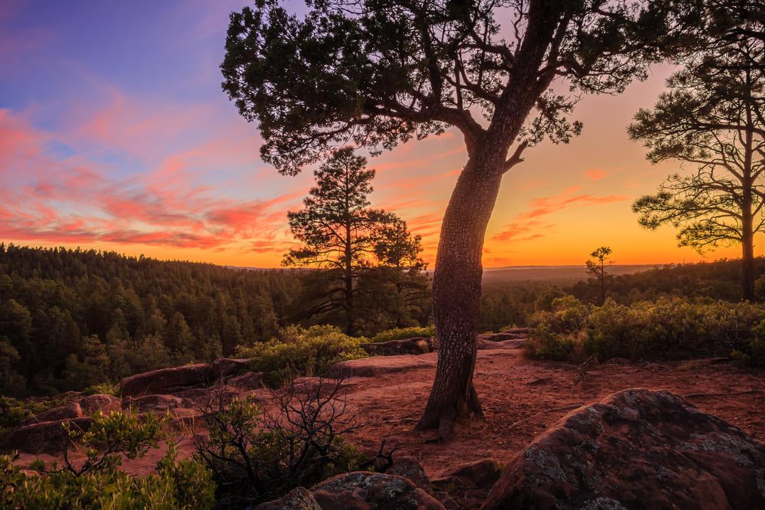 Sell my house pinetop-lakeside arizona